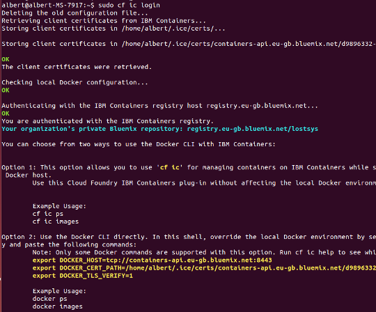 IBM Bluemix CLI Login