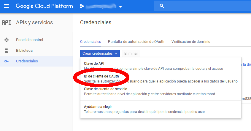API Google Credentials