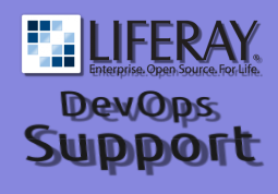 Liferay Support